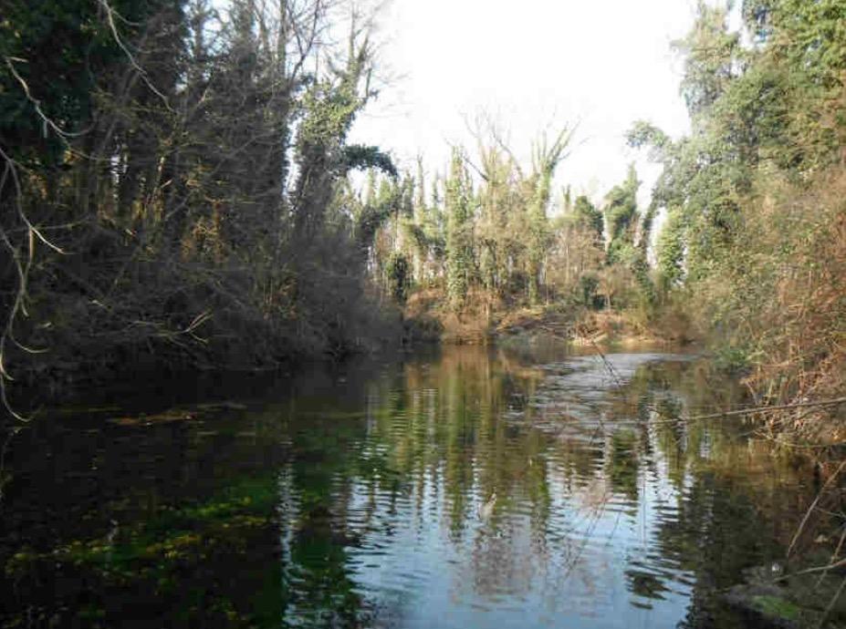 Crema News - Arco blu, capitale naturale